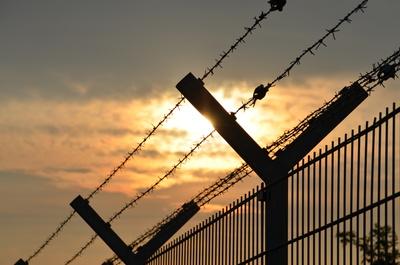 Folter und Guantanamera
